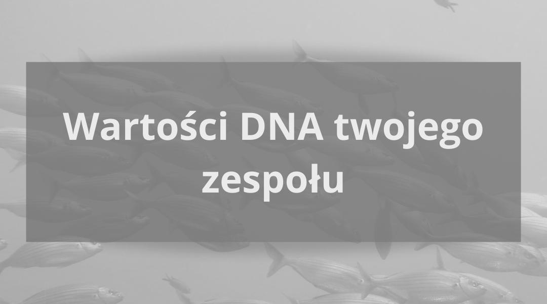 Ukryte DNA każdego zespołu